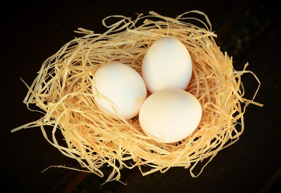 weisse_eier
