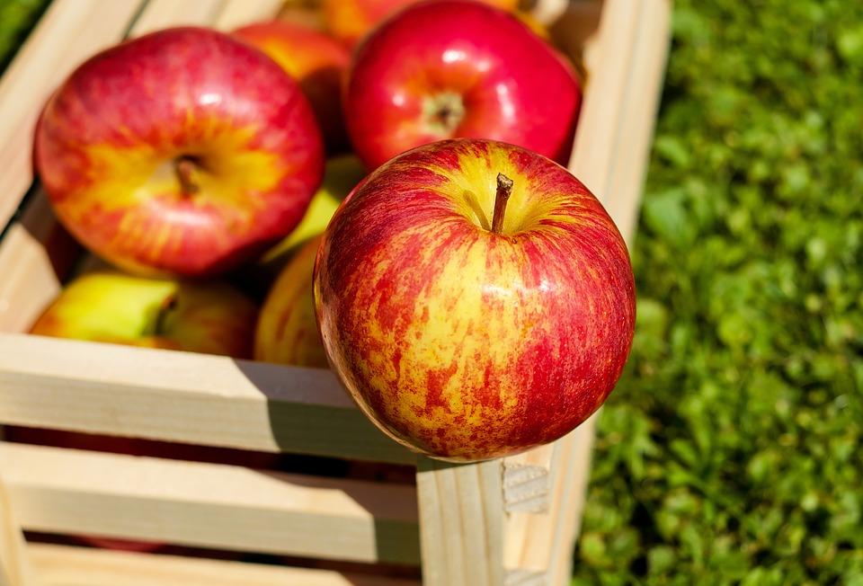 Keine Angst vor der Schale – Wie Obst am besten gegessen werden sollte