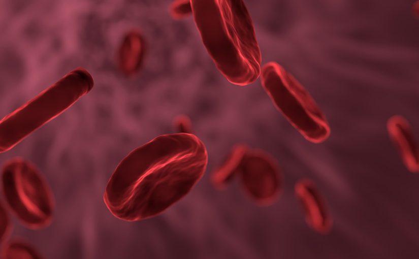 Mit Blutgefäßen aus Stammzellen gegen Volkskrankheit Diabetes