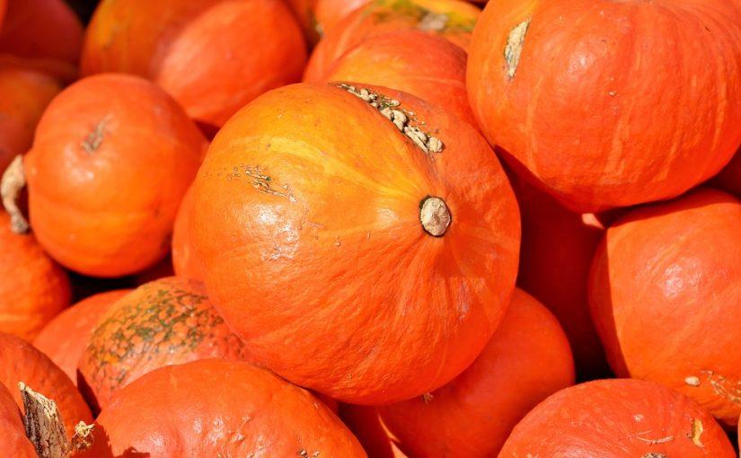 Kürbis: Ein gesunder und kalorienarmer Sattmacher